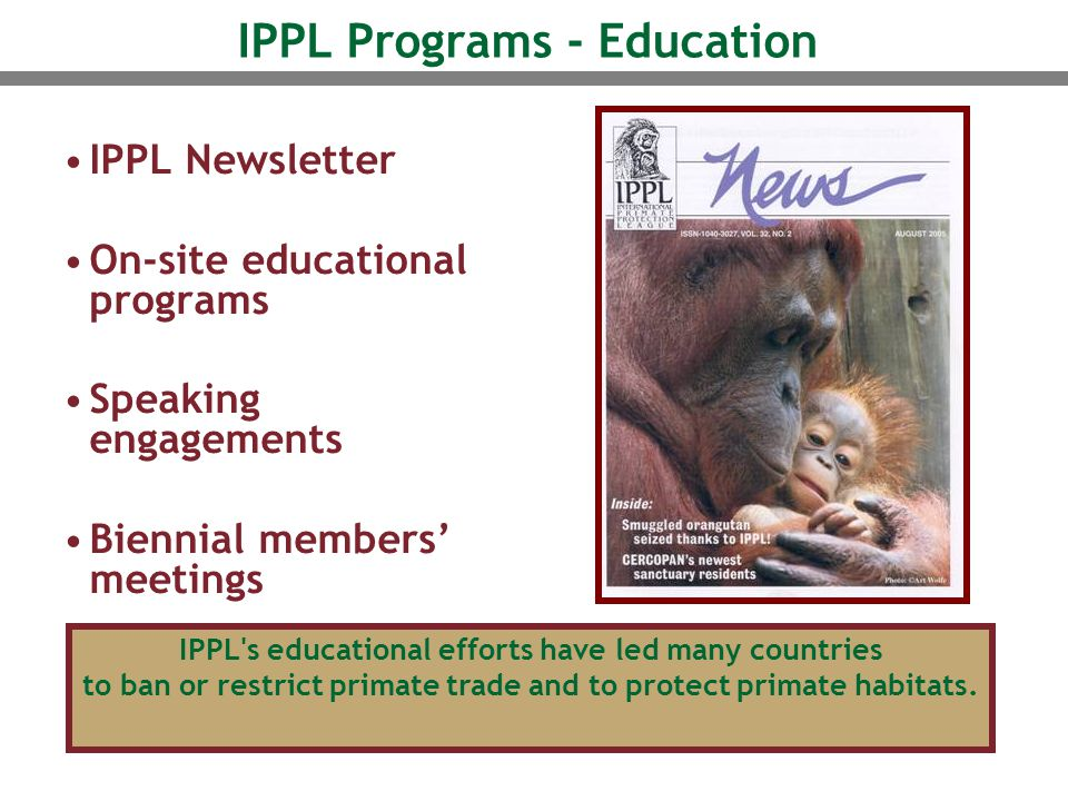 IPPL Programs - Education IPPL Newsletter On-site educational programs Speaking engagements Biennial members' meetings IPPL s educational efforts have led many countries to ban or restrict primate trade and to protect primate habitats.