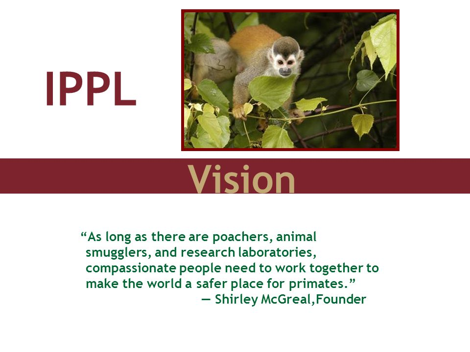 "Vision IPPL ""As long as there are poachers, animal smugglers, and research laboratories, compassionate people need to work together to make the world"