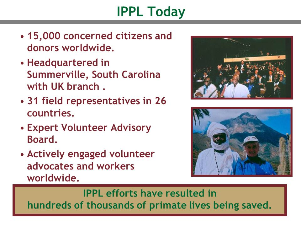 IPPL Today 15,000 concerned citizens and donors worldwide. Headquartered in Summerville, South Carolina with UK branch. 31 field representatives in 26