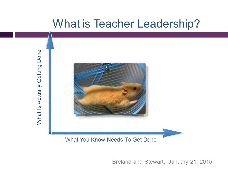 Teacher Leader Model Standards Purpose -the knowledge, skills and competencies that teachers need to assume leadership roles in their schools, districts, and the profession.