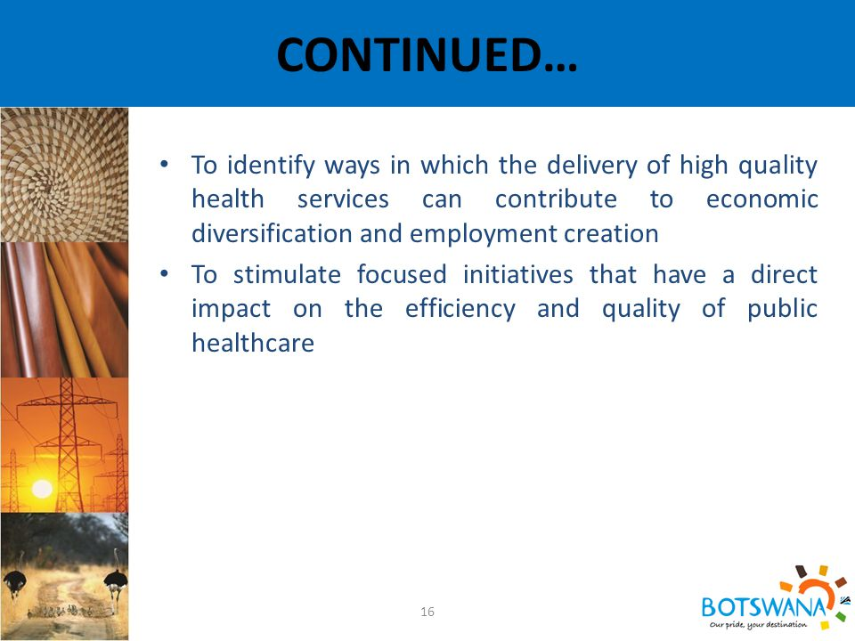 CONTINUED… 16 To identify ways in which the delivery of high quality health services can contribute to economic diversification and employment creation To stimulate focused initiatives that have a direct impact on the efficiency and quality of public healthcare