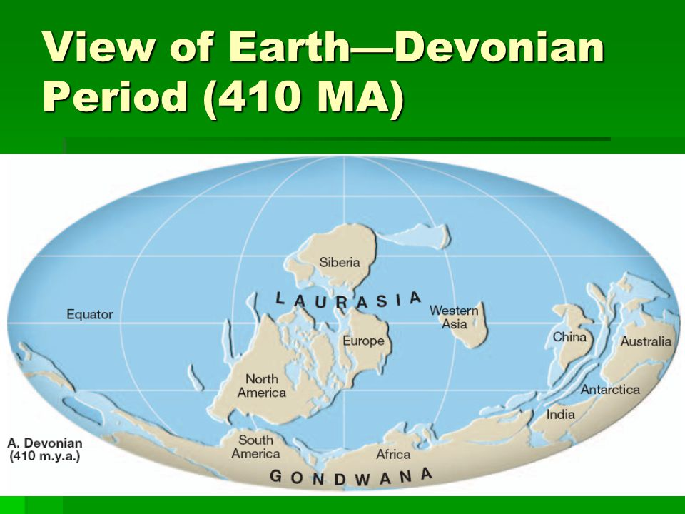 View of Earth—Devonian Period (410 MA)