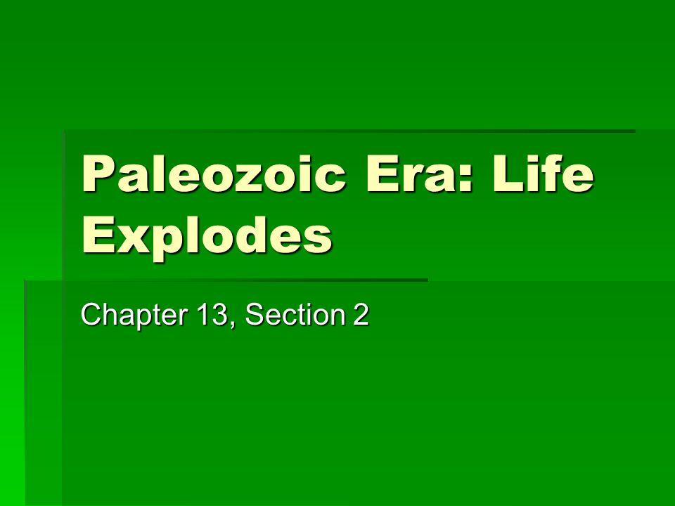Paleozoic Era: Life Explodes Chapter 13, Section 2