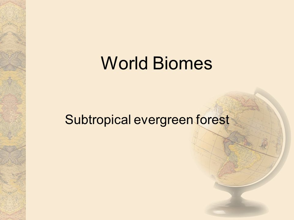 World Biomes Subtropical evergreen forest