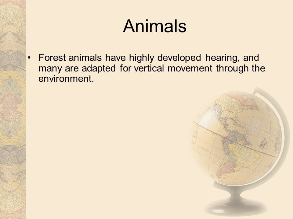 Animals Forest animals have highly developed hearing, and many are adapted for vertical movement through the environment.