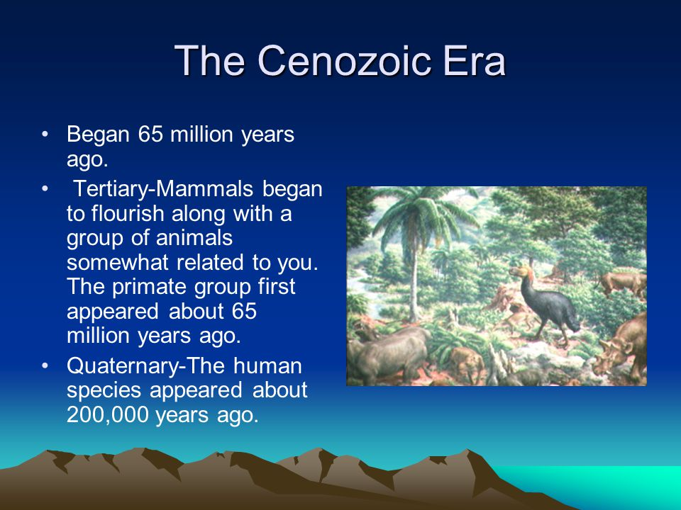 The Cenozoic Era Began 65 million years ago. Tertiary-Mammals began to flourish along with a group of animals somewhat related to you. The primate gro