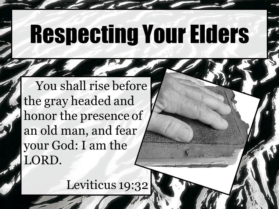 Respecting Your Elders You shall rise before the gray headed and honor the presence of an old man, and fear your God: I am the LORD.
