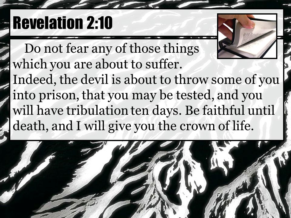 Do not fear any of those things which you are about to suffer.
