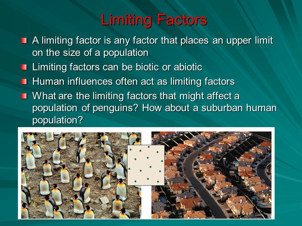 Limiting Factors A limiting factor is any factor that places an upper limit on the size of a population Limiting factors can be biotic or abiotic Human influences often act as limiting factors What are the limiting factors that might affect a population of penguins.