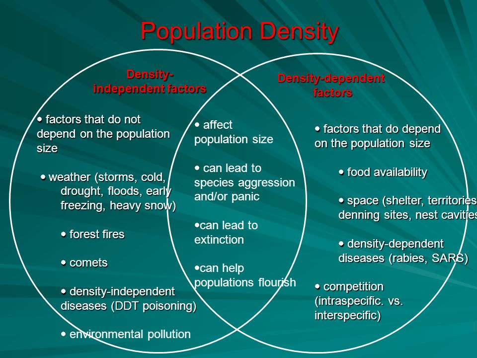 Population Density Density- independent factors Density-dependentfactors  factors that do not depend on the population size  weather (storms, cold,  weather (storms, cold, drought, floods, early freezing, heavy snow)  forest fires  comets  density-independent diseases (DDT poisoning)  environmental pollution  factors that do depend on the population size  food availability  space (shelter, territories, denning sites, nest cavities)  density-dependent diseases (rabies, SARS)  competition (intraspecific.