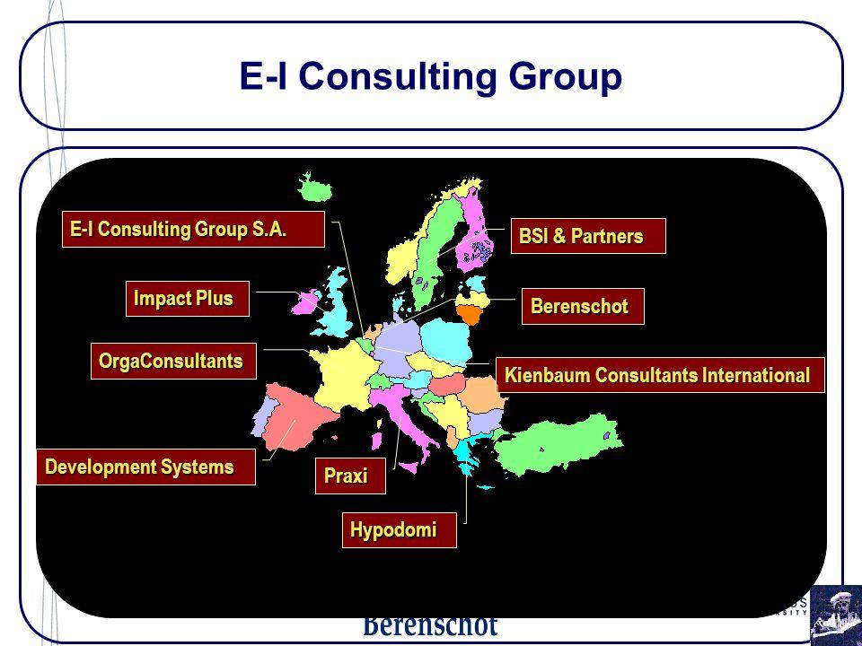 E-I Consulting Group BSI & Partners Kienbaum Consultants International Praxi Development Systems OrgaConsultants Berenschot Hypodomi E-I Consulting Group S.A.