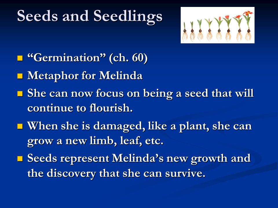 Seeds and Seedlings Germination (ch. 60) Germination (ch.