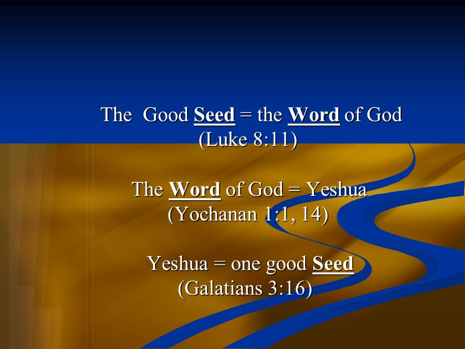 The Good Seed = the Word of God The Good Seed = the Word of God (Luke 8:11) (Luke 8:11) The Word of God = Yeshua The Word of God = Yeshua (Yochanan 1: