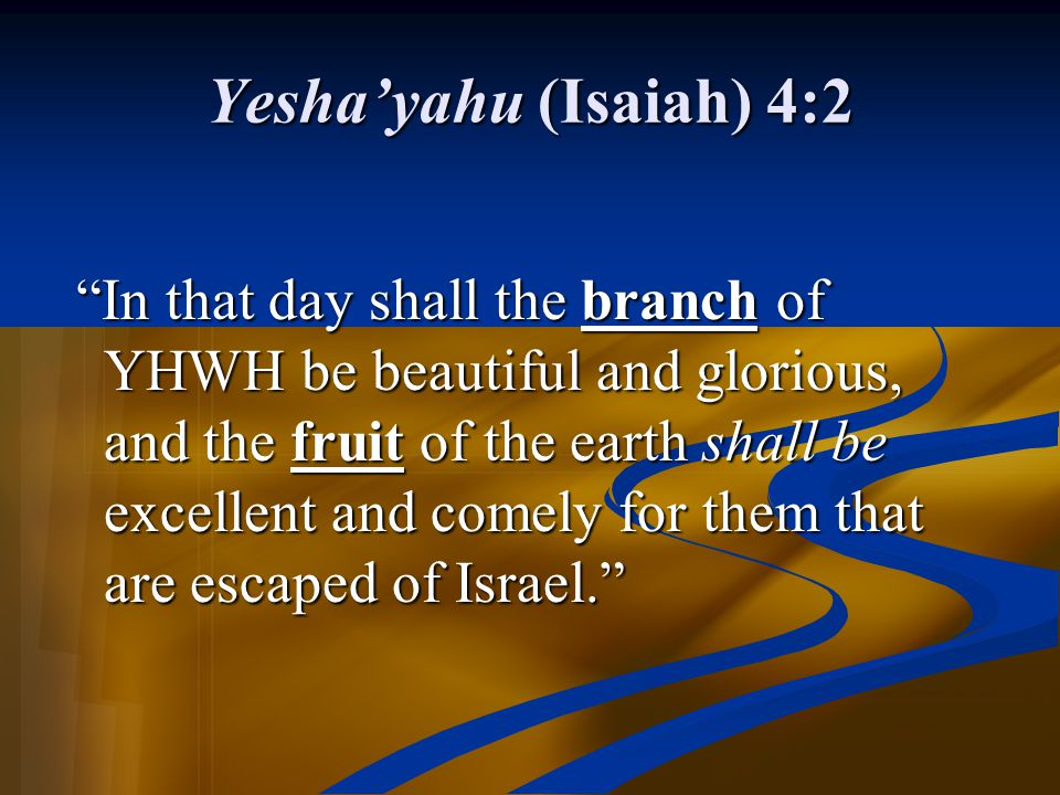 "Yesha'yahu (Isaiah) 4:2 ""In that day shall the branch of YHWH be beautiful and glorious, and the fruit of the earth shall be excellent and comely for"