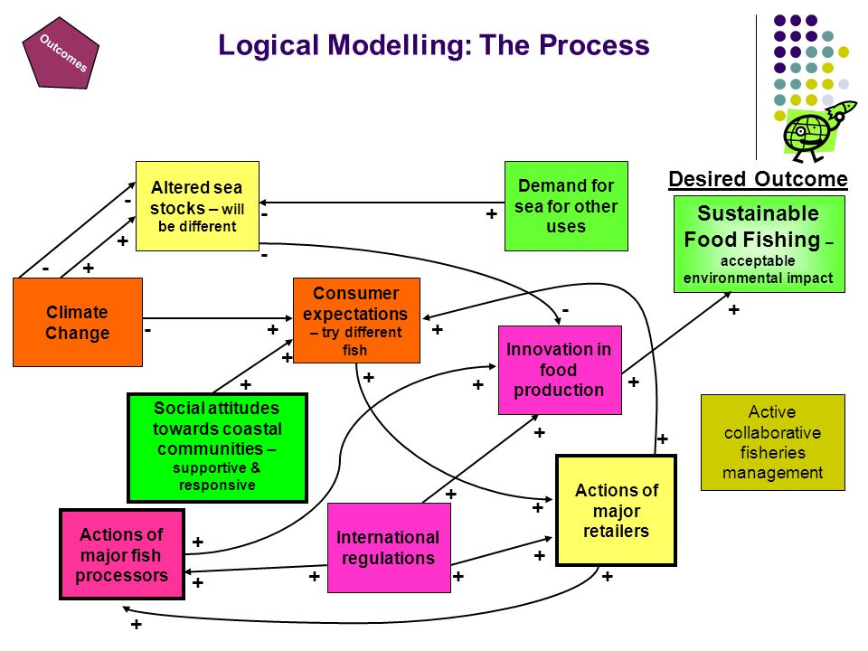 Outcomes Logical Modelling: The Process Demand for sea for other uses Consumer expectations – try different fish Social attitudes towards coastal communities – supportive & responsive Actions of major retailers Actions of major fish processors -+ - - - - + + -+ + + + + + + + + + + + + + + Altered sea stocks – will be different Desired Outcome Sustainable Food Fishing – acceptable environmental impact + + Innovation in food production + + International regulations Climate Change Active collaborative fisheries management
