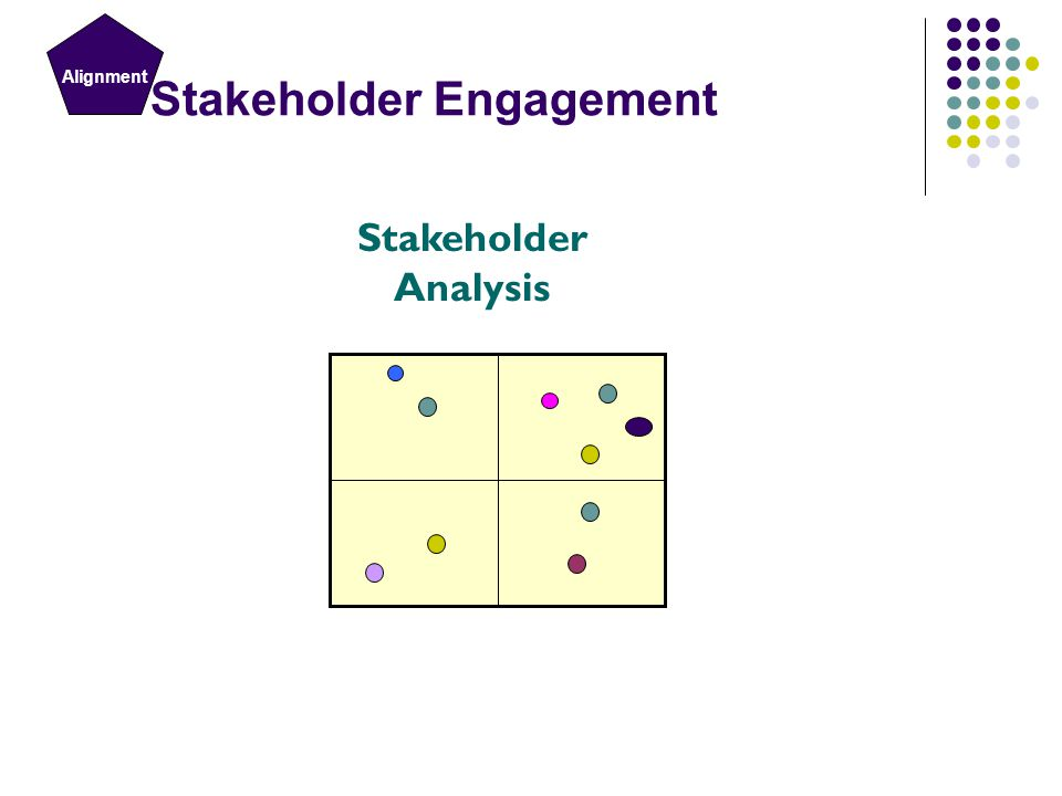 Challenging the process Stakeholder Analysis Stakeholder Engagement Alignment