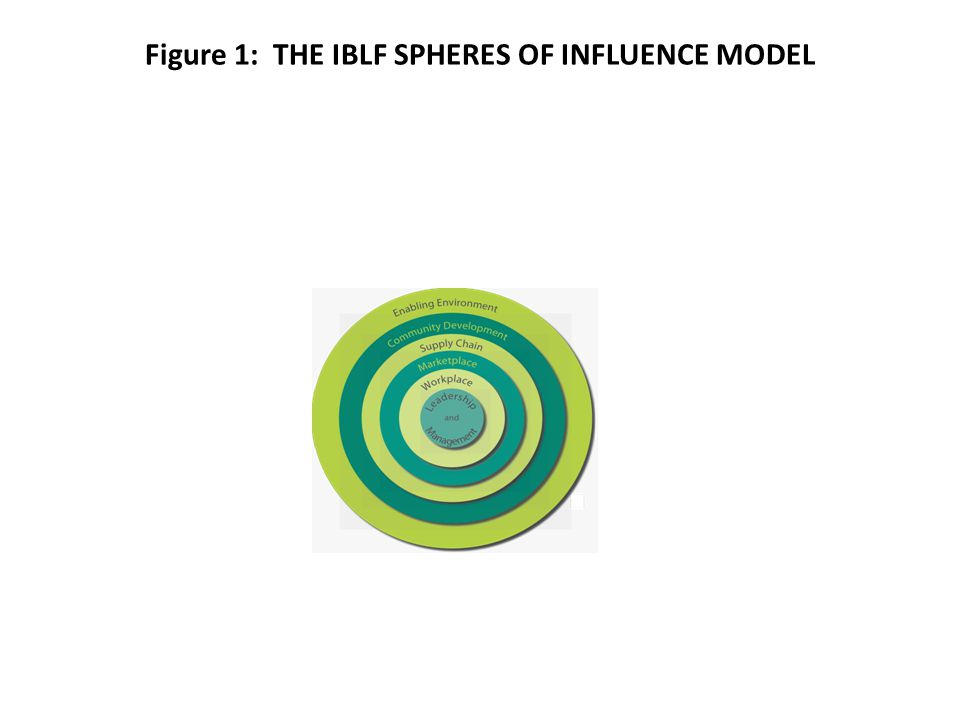Figure 1: THE IBLF SPHERES OF INFLUENCE MODEL
