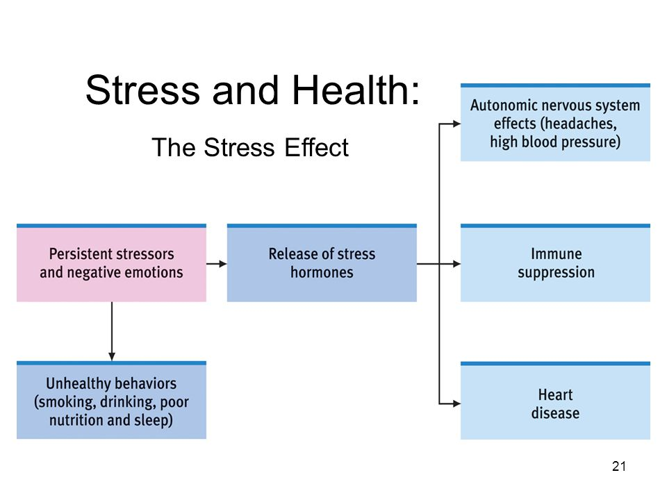 21 The Stress Effect Stress and Health:
