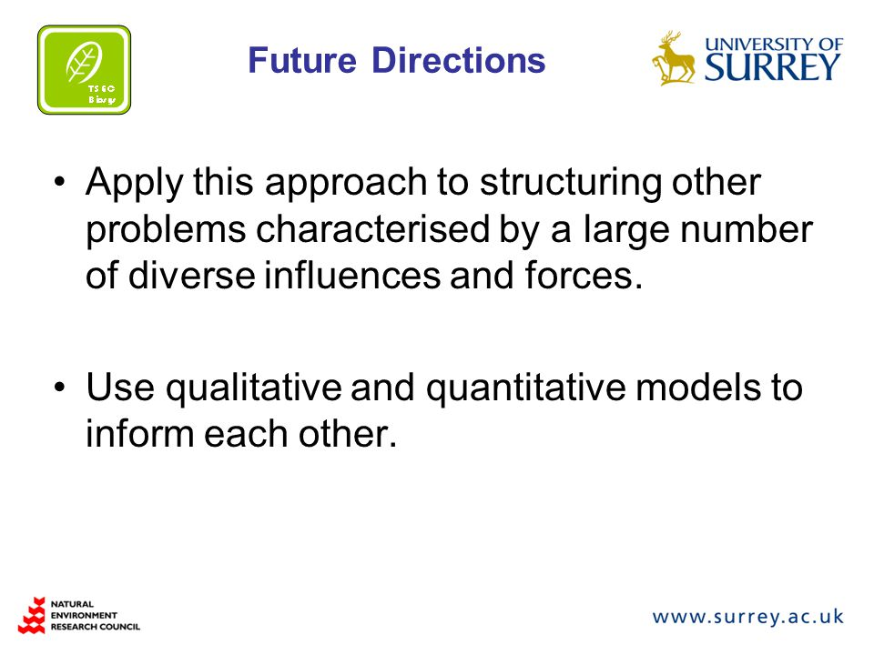 Future Directions Apply this approach to structuring other problems characterised by a large number of diverse influences and forces.