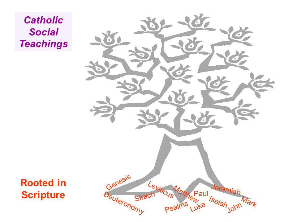 Rooted in Scripture Catholic Social Teachings Deuteronomy John Leviticus Psalms Matthew Luke Paul Genesis Isaiah Jeremiah Mark Sirach