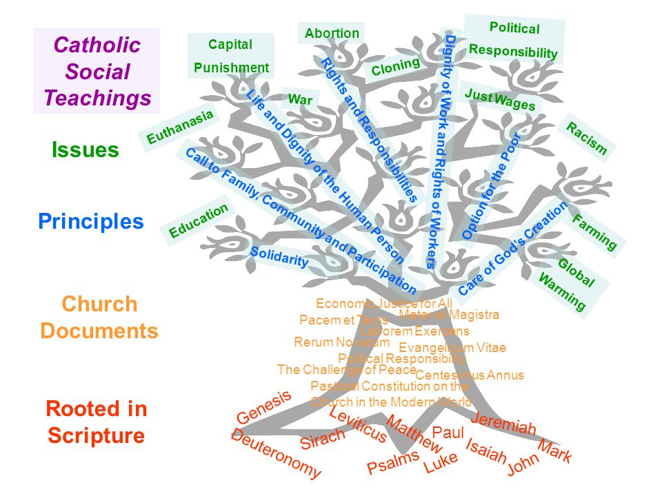 Rooted in Scripture Catholic Social Teachings Issues Deuteronomy John Leviticus Psalms Matthew Luke Paul Genesis Isaiah Jeremiah Mark Sirach Laborem Exercens The Challenge of Peace Political Responsibility Economic Justice for All Pastoral Constitution on the Church in the Modern World Evangelicum Vitae Mater et Magistra Centesimus Annus Pacem et Terris Rerum Novarum Principles Solidarity Call to Family, Community and Participation Life and Dignity of the Human Person Rights and Responsibilities Dignity of Work and Rights of Workers Option for the Poor Care of God's Creation Education War Capital Punishment Abortion Political Responsibility Cloning Just Wages Racism Euthanasia Farming Global Warming Church Documents