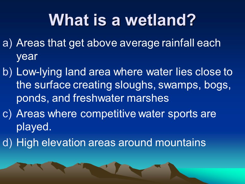 What is a wetland.
