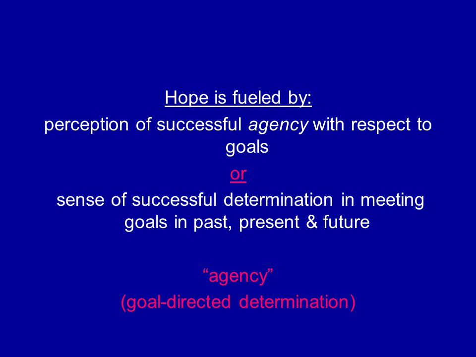 Hope is fueled by: perception of successful agency with respect to goals or sense of successful determination in meeting goals in past, present & futu