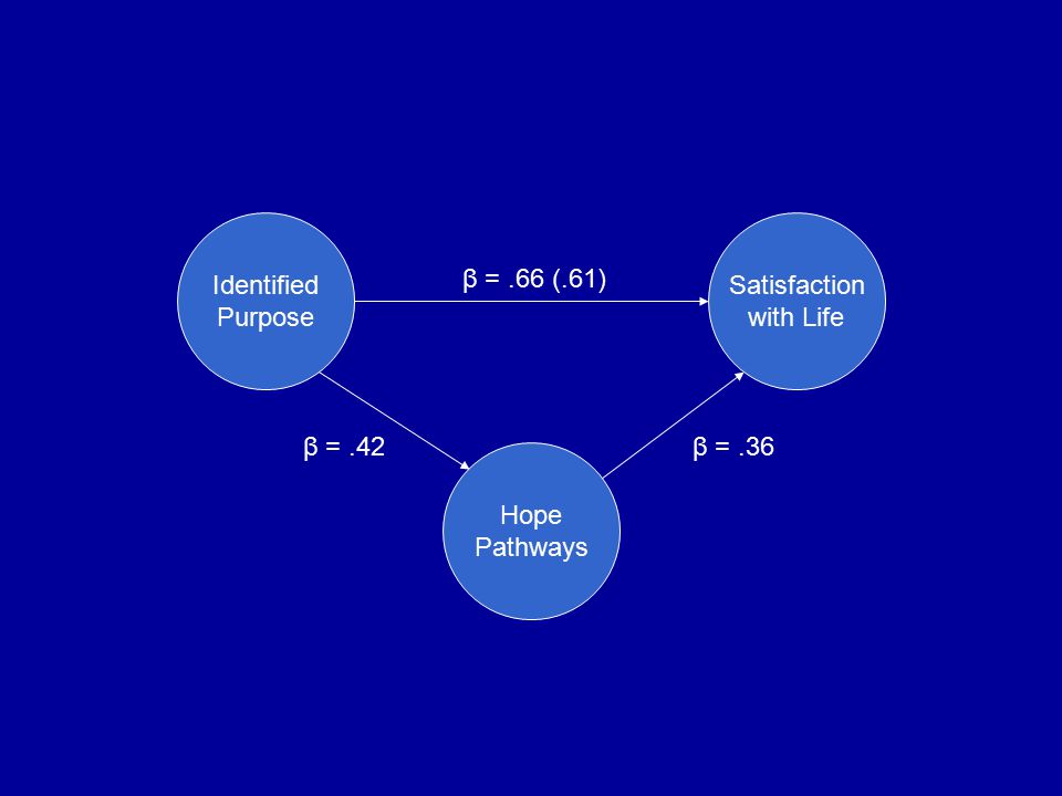 Identified Purpose Satisfaction with Life Hope Pathways β =.66 (.61) β =.36β =.42