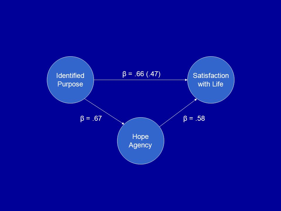 Identified Purpose Satisfaction with Life Hope Agency β =.66 (.47) β =.58β =.67