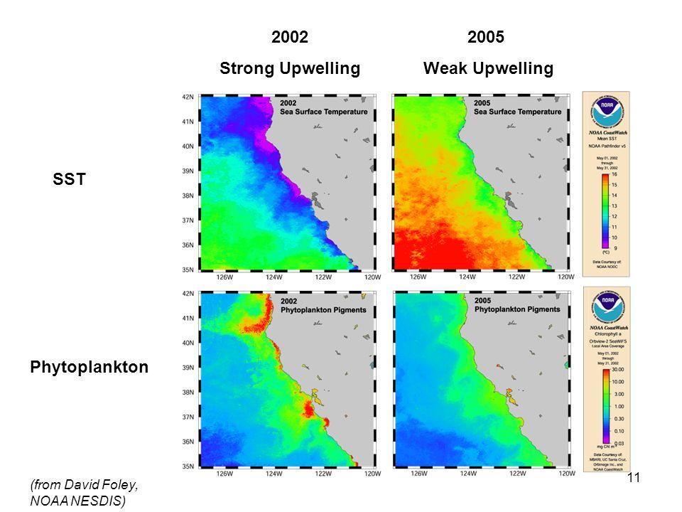 11 (from David Foley, NOAA NESDIS) 2002 Strong Upwelling 2005 Weak Upwelling SST Phytoplankton