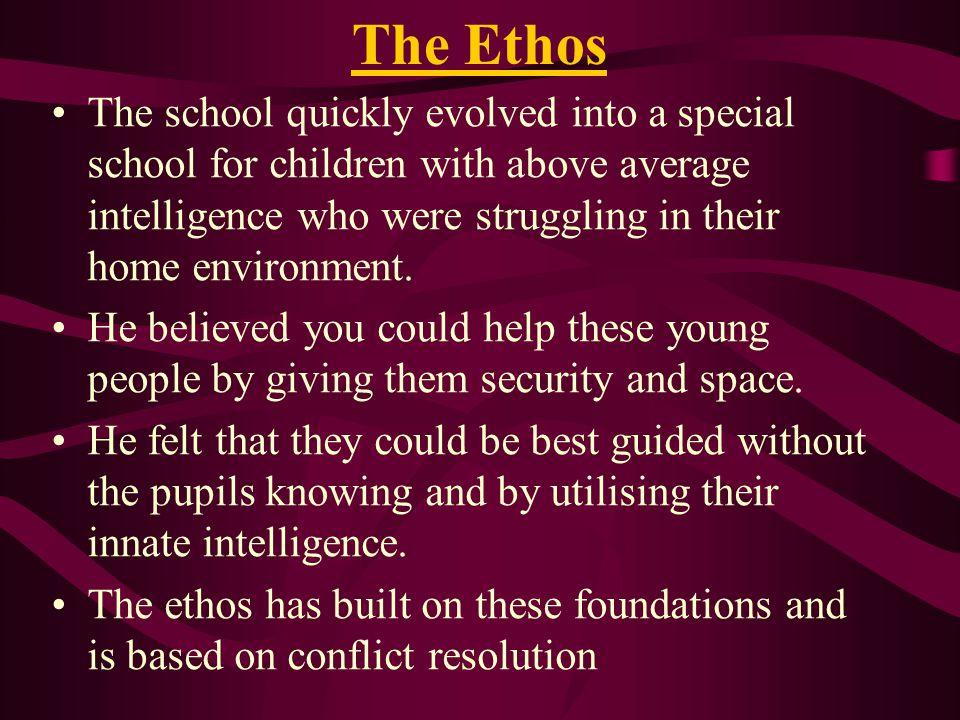 The Ethos The school quickly evolved into a special school for children with above average intelligence who were struggling in their home environment.