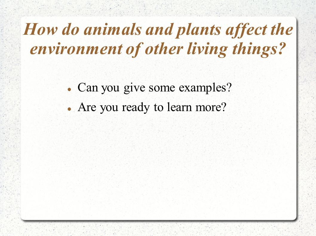 How do animals and plants affect the environment of other living things? Can you give some examples? Are you ready to learn more?