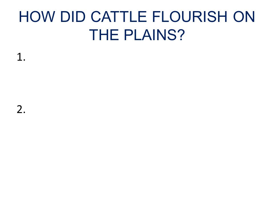 HOW DID CATTLE FLOURISH ON THE PLAINS 1. 2.