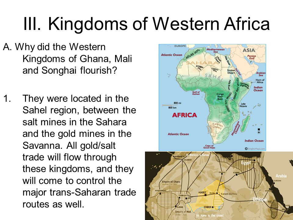 III. Kingdoms of Western Africa A. Why did the Western Kingdoms of Ghana, Mali and Songhai flourish? 1.They were located in the Sahel region, between