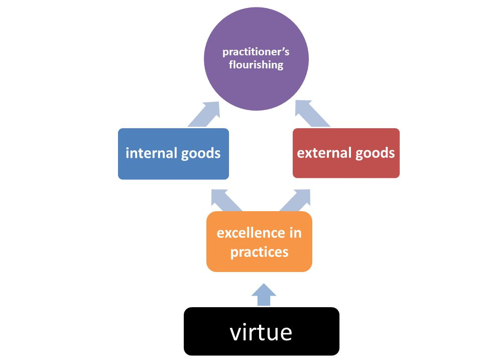 practitioner's flourishing internal goods external goods excellence in practices virtue