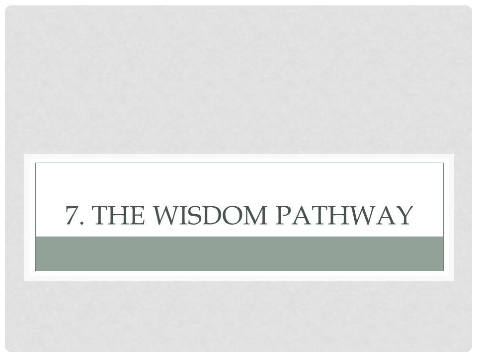 7. THE WISDOM PATHWAY