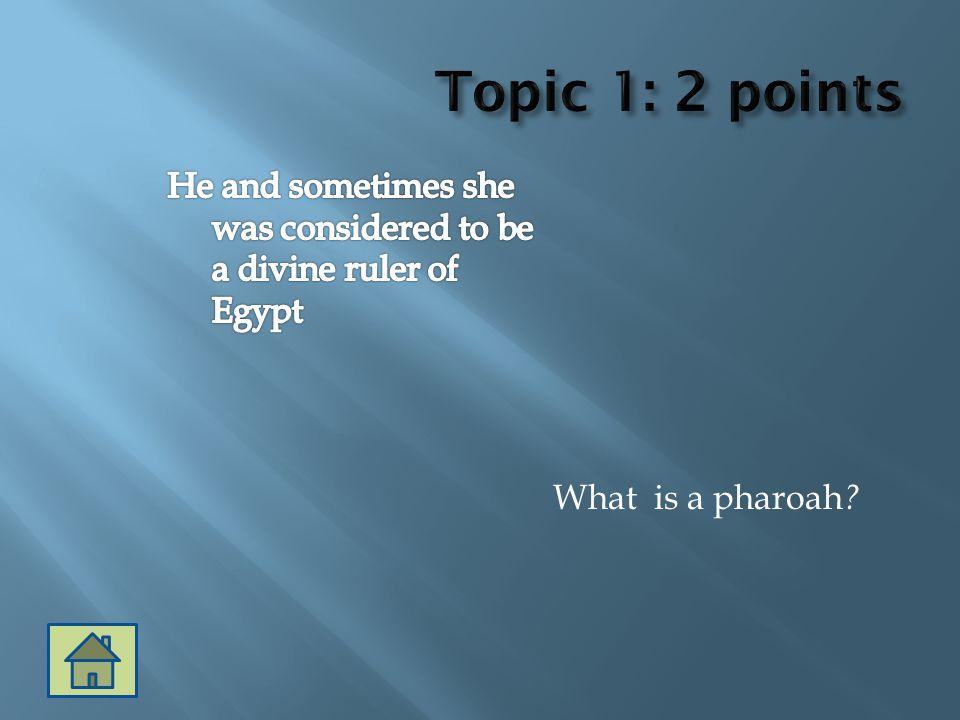 What is a pharoah