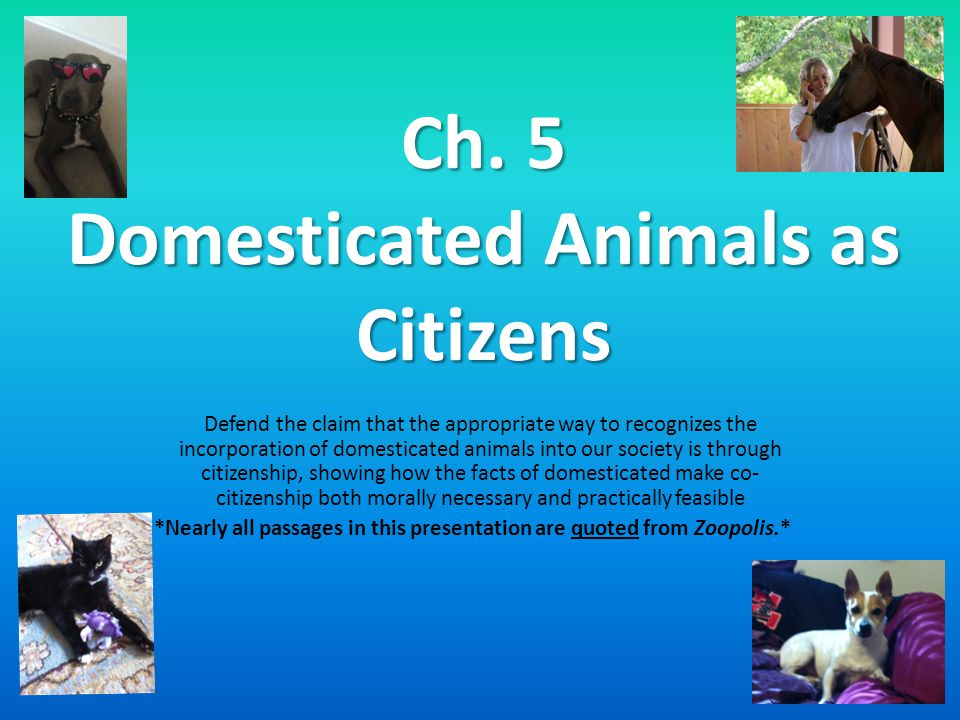 Ch. 5 Domesticated Animals as Citizens Defend the claim that the appropriate way to recognizes the incorporation of domesticated animals into our soci