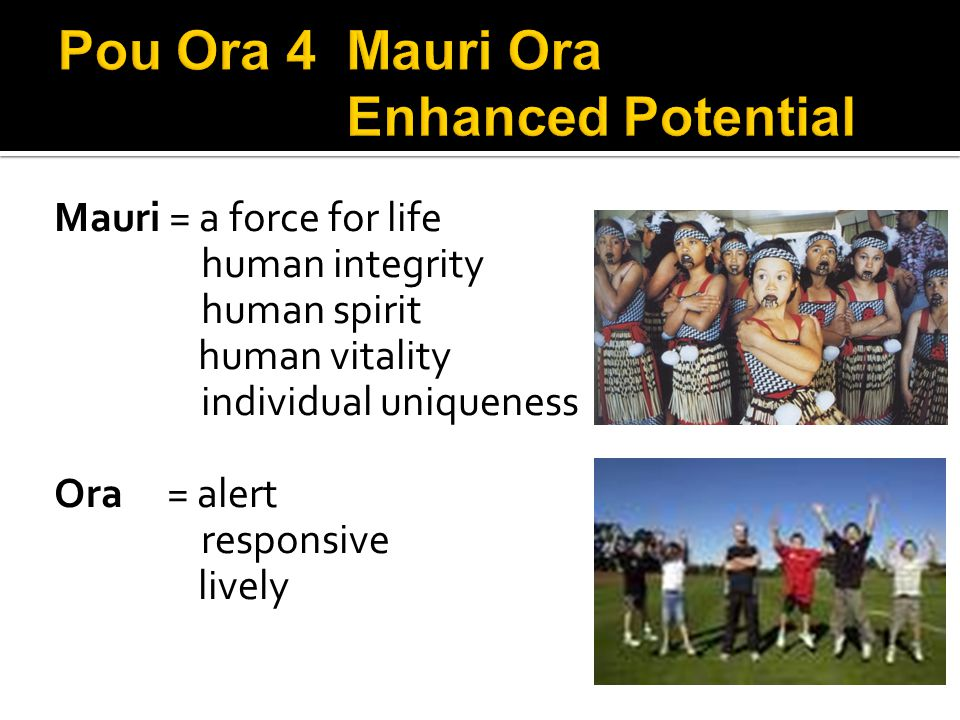 Mauri = a force for life human integrity human spirit human vitality individual uniqueness Ora = alert responsive lively