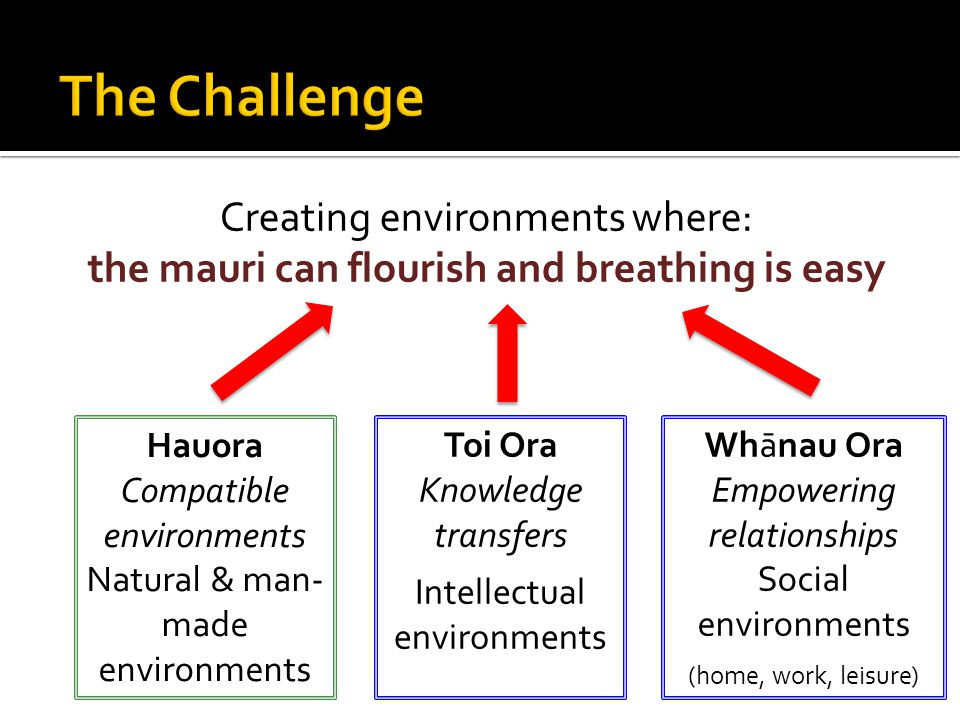 Creating environments where: the mauri can flourish and breathing is easy Toi Ora Knowledge transfers Intellectual environments Hauora Compatible environments Natural & man- made environments Whānau Ora Empowering relationships Social environments (home, work, leisure)