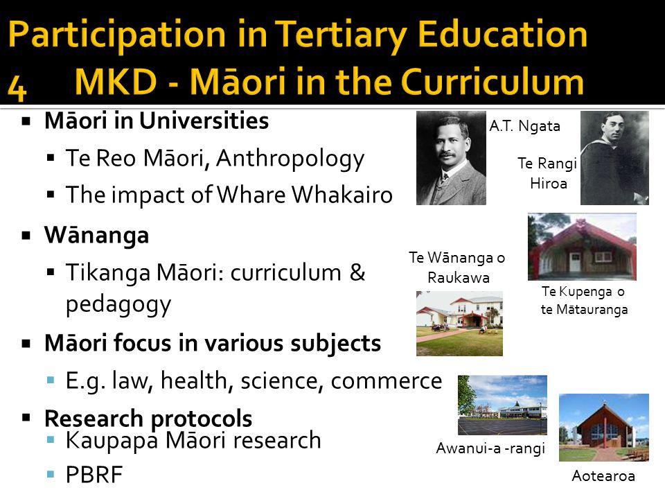  Māori in Universities  Te Reo Māori, Anthropology  The impact of Whare Whakairo  Wānanga  Tikanga Māori: curriculum & pedagogy  Māori focus in various subjects  E.g.
