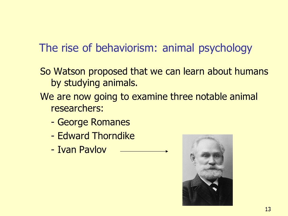 13 The rise of behaviorism: animal psychology So Watson proposed that we can learn about humans by studying animals. We are now going to examine three