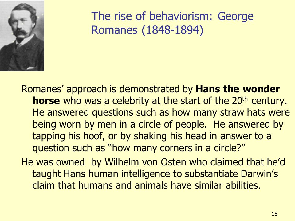 15 The rise of behaviorism: George Romanes (1848-1894) Romanes' approach is demonstrated by Hans the wonder horse who was a celebrity at the start of the 20 th century.