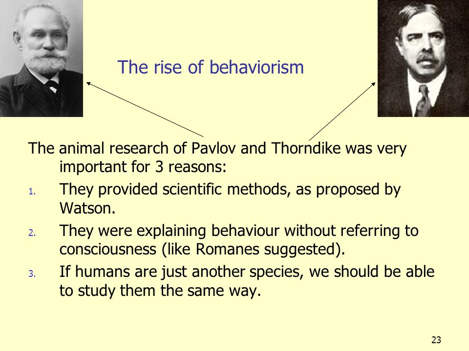 23 The rise of behaviorism The animal research of Pavlov and Thorndike was very important for 3 reasons: 1. They provided scientific methods, as propo