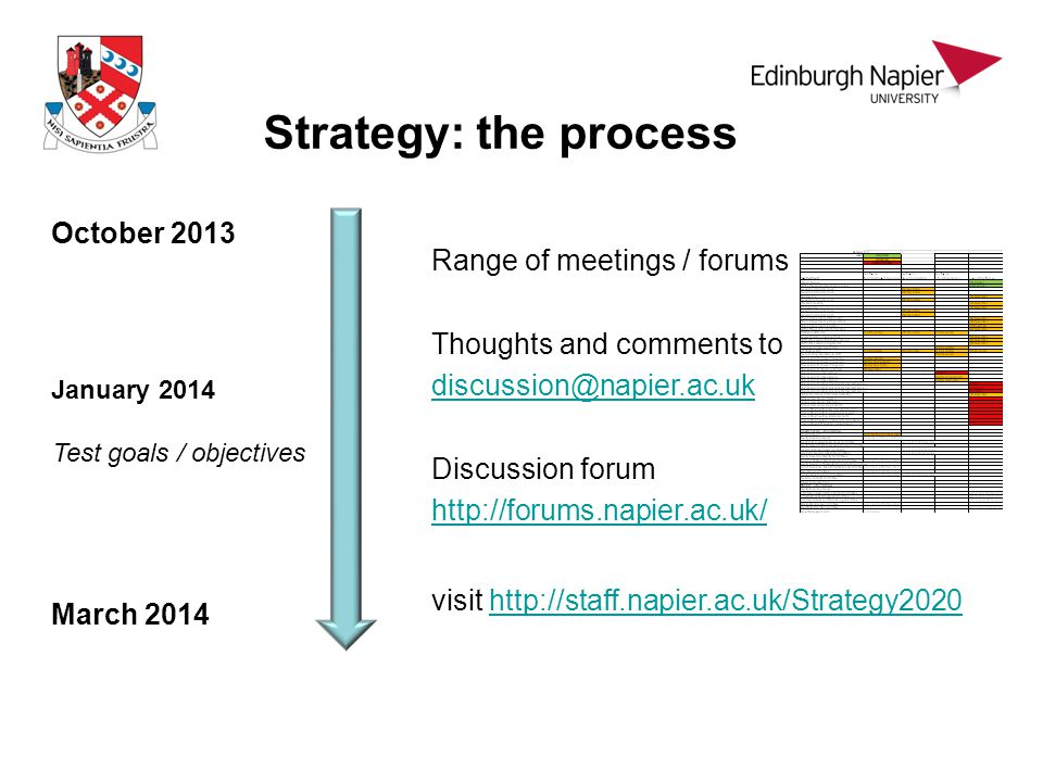 Strategy: the process October 2013 March 2014 January 2014 Test goals / objectives Range of meetings / forums Thoughts and comments to discussion@napi