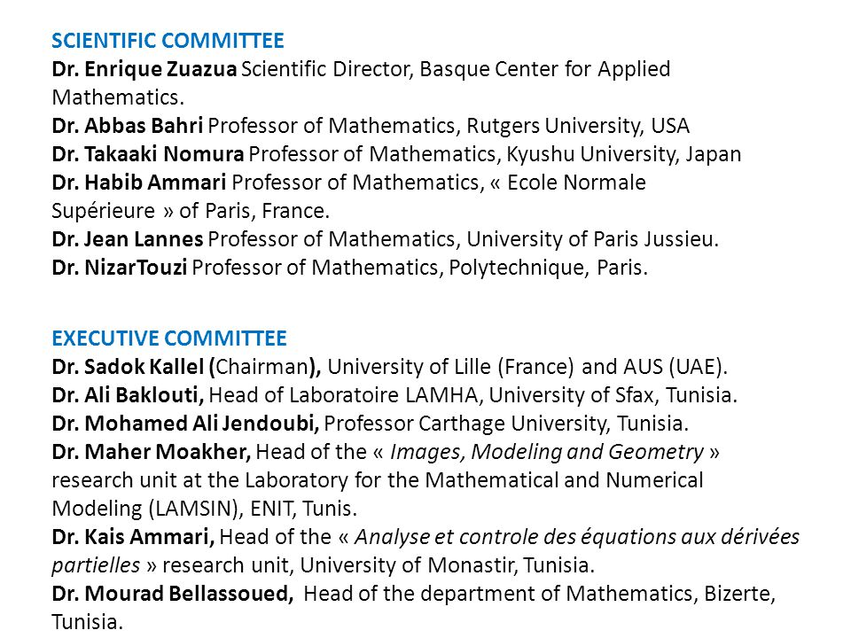 SCIENTIFIC COMMITTEE Dr.Enrique Zuazua Scientific Director, Basque Center for Applied Mathematics.
