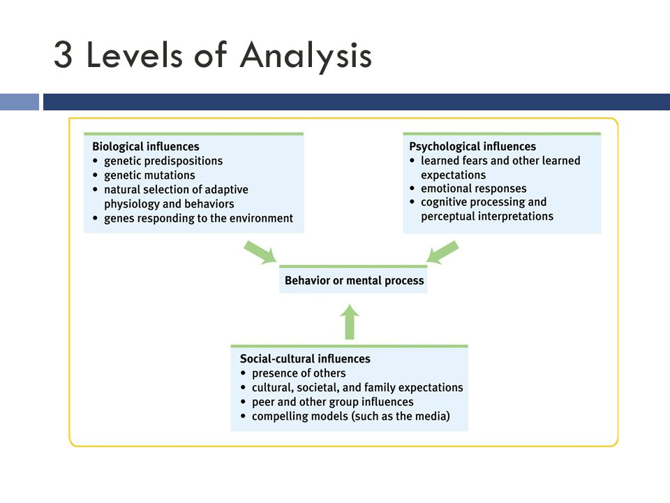 3 Levels of Analysis