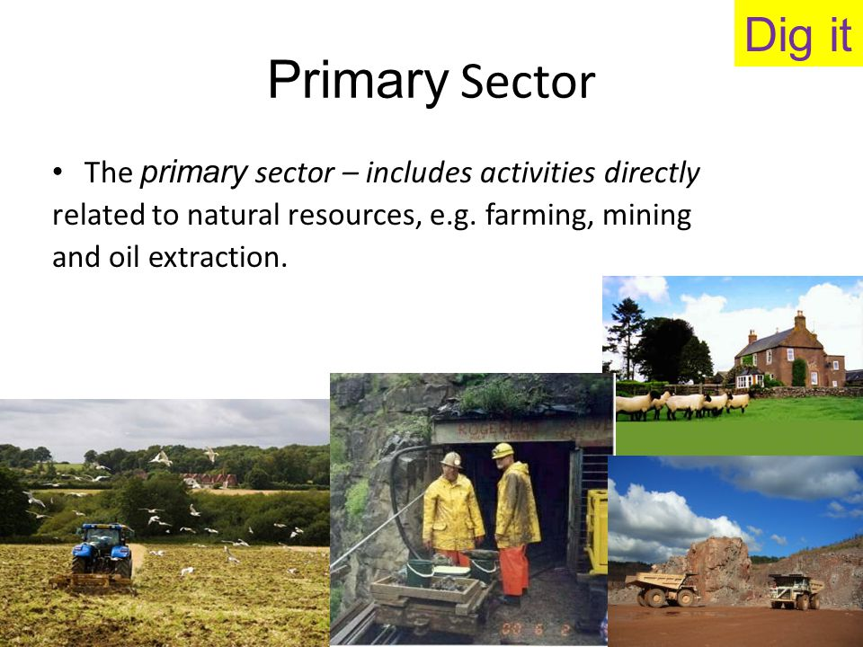 Secondary Sector The secondary sector – covers all the other goods production in the economy, including the processing of materials produced by the primary sector.
