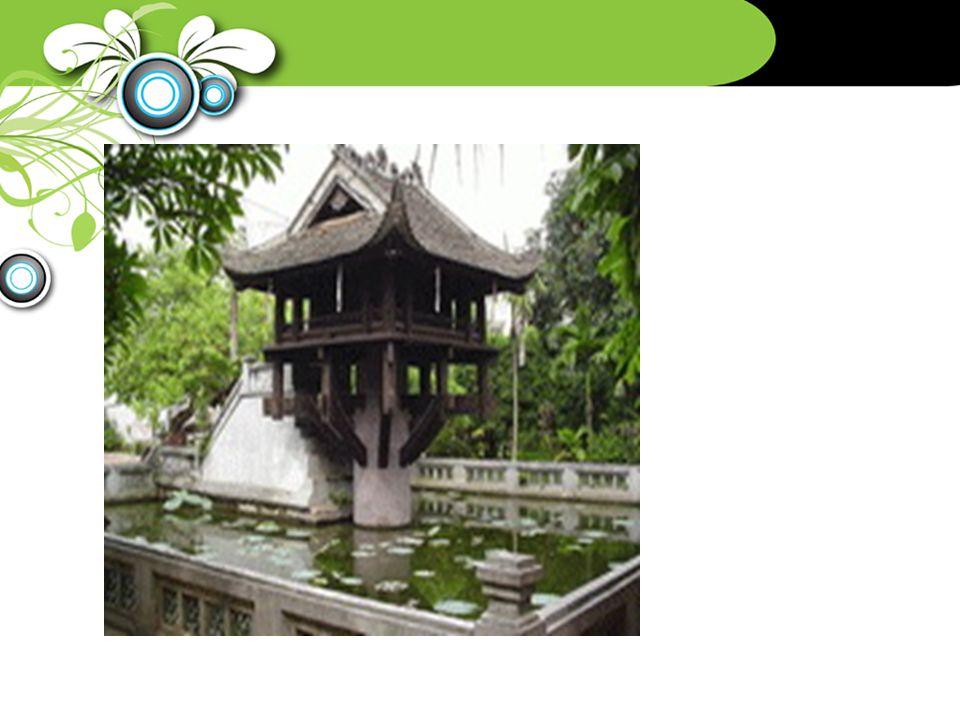 Tan Trao banyan