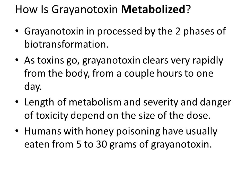 How Is Grayanotoxin Metabolized. Grayanotoxin in processed by the 2 phases of biotransformation.